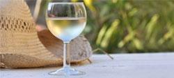 Vinhos brancos fresquinhos ao melhor preço