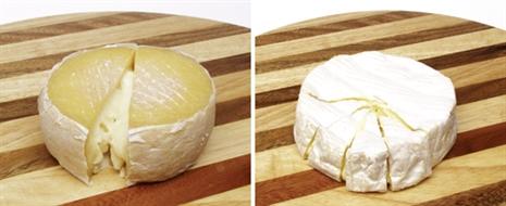 Azeitão e Camembert