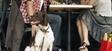 Esplanada: só os cães de assistência podem entrar